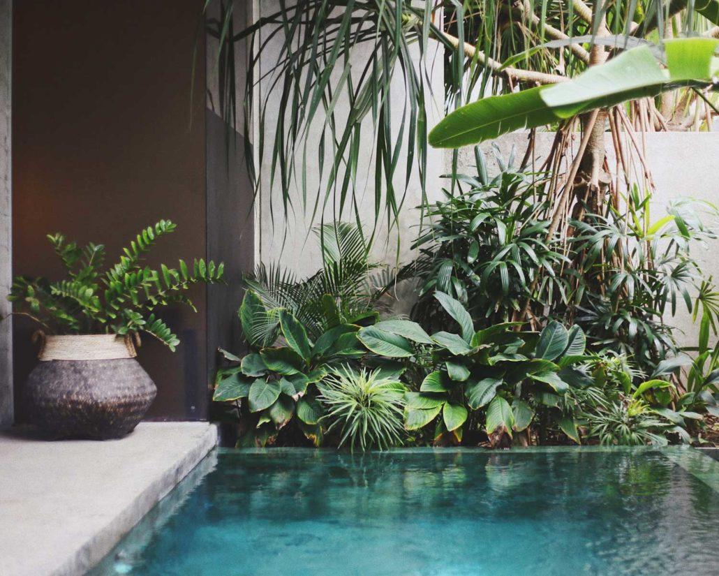 Feng Shui Pool
